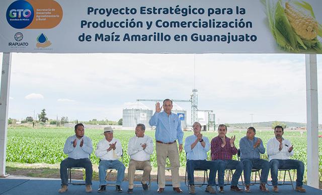 Presentación del Proyecto de maíz amarillo en Guanajuato