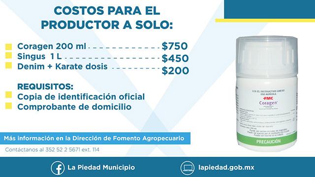 Gusano Cogollero insecticidas subsidio