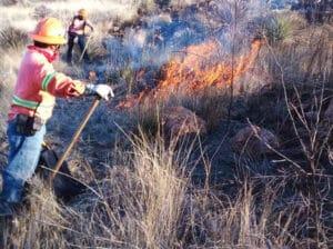 incendios forestales Pénjamo 1