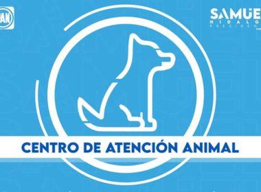 Centro de Atención Canina