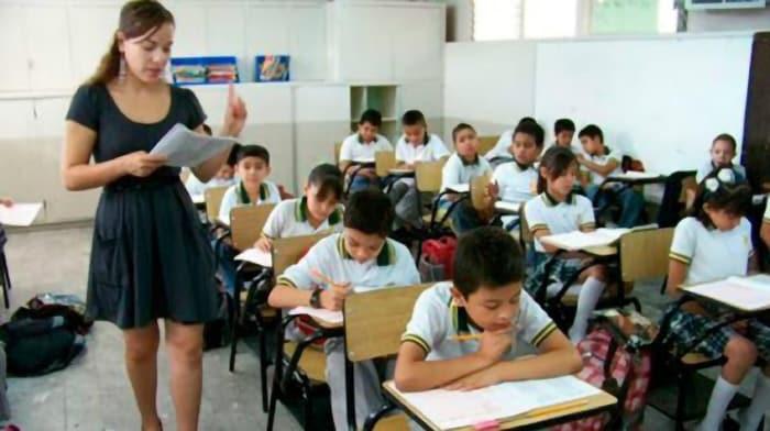 maestro / maestra primaria